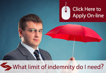what limit of indemnity do I need