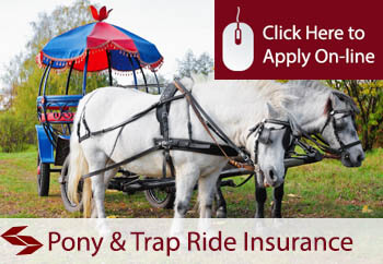 self employed pony and trap rides liability insurance