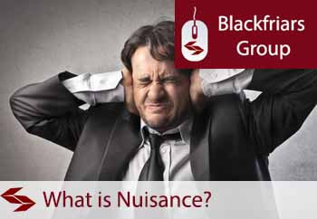 what is the definition of nuisance