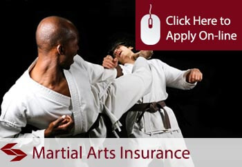 Martial Arts Teachers Liability Insurance