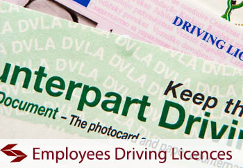 employees-driving-licences