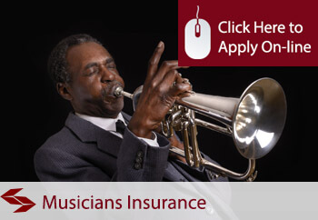 Self Employed Musicians Liability Insurance