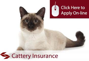 Catterys Liability Insurance