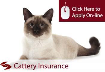 catterys insurance