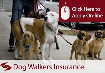 dog walkers insurance