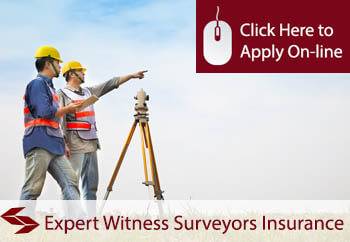 Expert Witness Surveyors Employers Liability Insurance