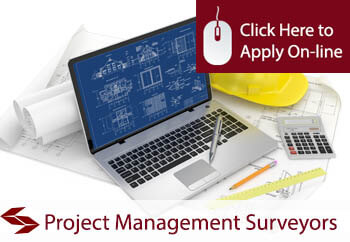 Project Management Surveyors Liability Insurance