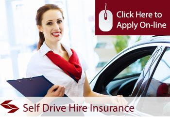self drive hire insurance
