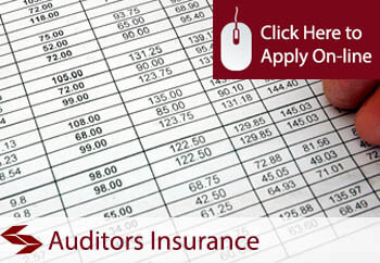 Auditors Professional Indemnity Insurance