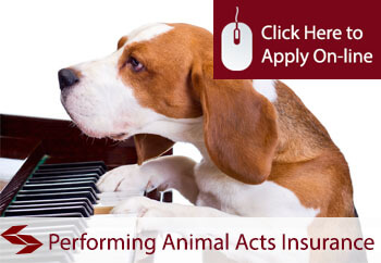 Performing Animal Acts Public Liability Insurance