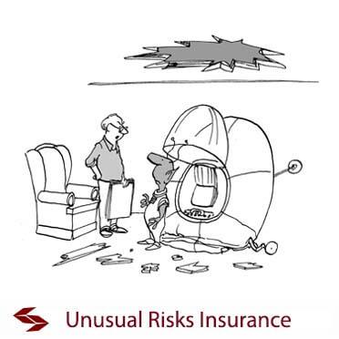 unusual risks insurance
