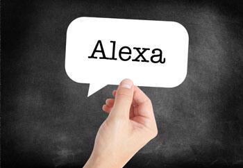 DVLA information from Alexa